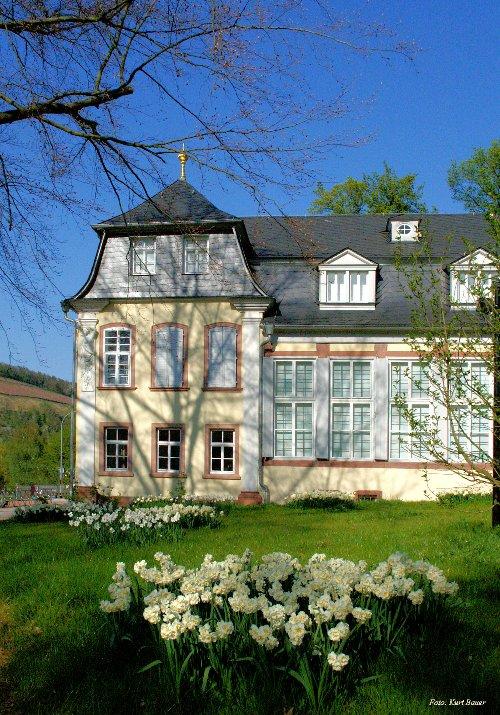 135328P Hofgarten schlösschen Wertheim24 03.04.2015